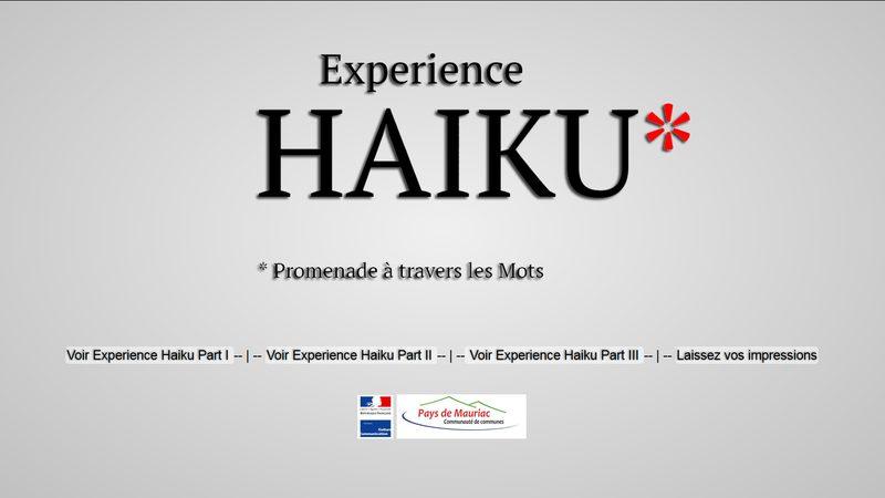 logo_haiku
